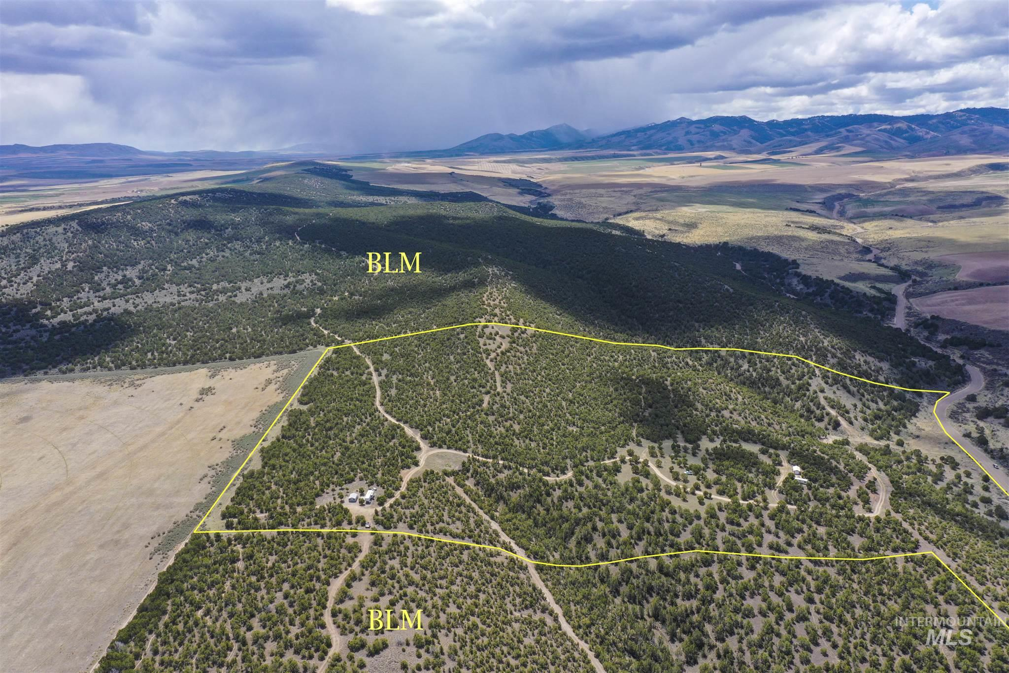 TBD Cedar Ridge Road Property Photo - Rockland, ID real estate listing