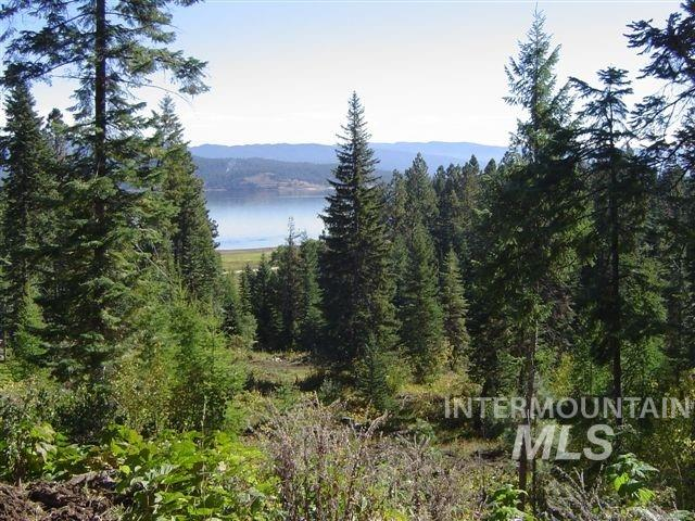 0 Anderson Creek Property Photo - Cascade, ID real estate listing