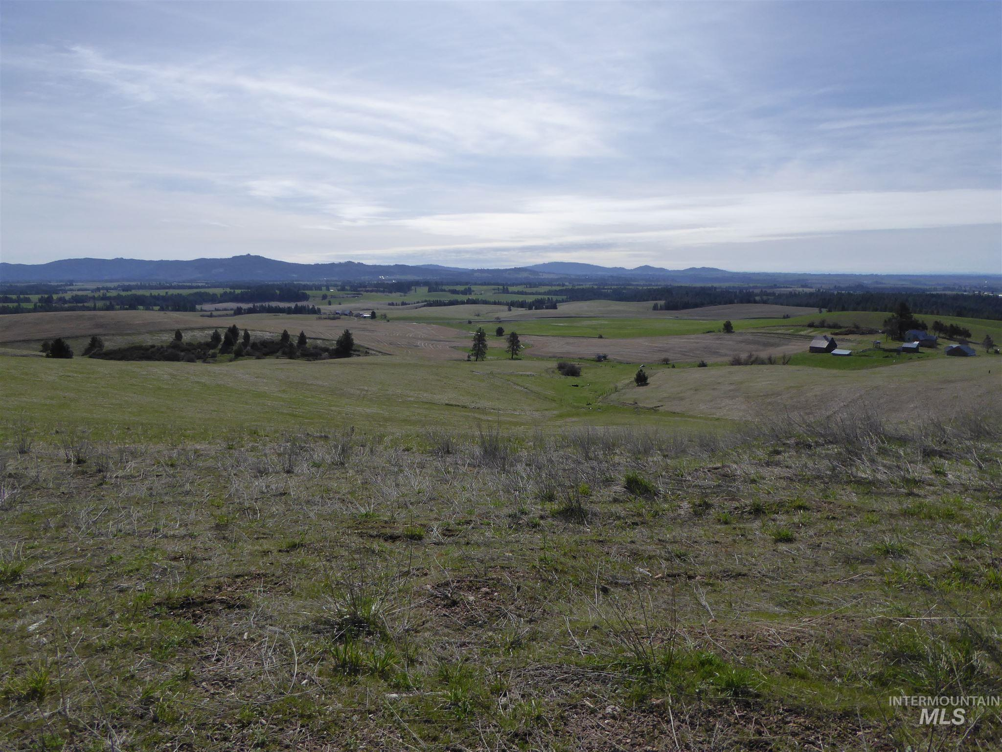 Tbd Big Bear Ridge (lot 7) Property Photo 1