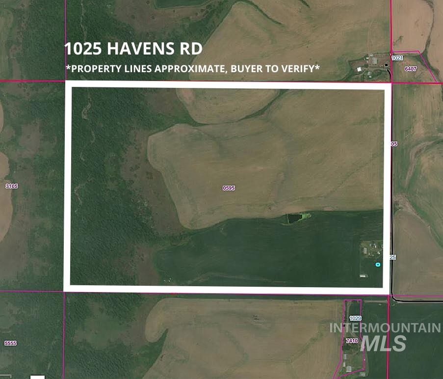 1025 Havens Rd Property Photo - Kendrick, ID real estate listing