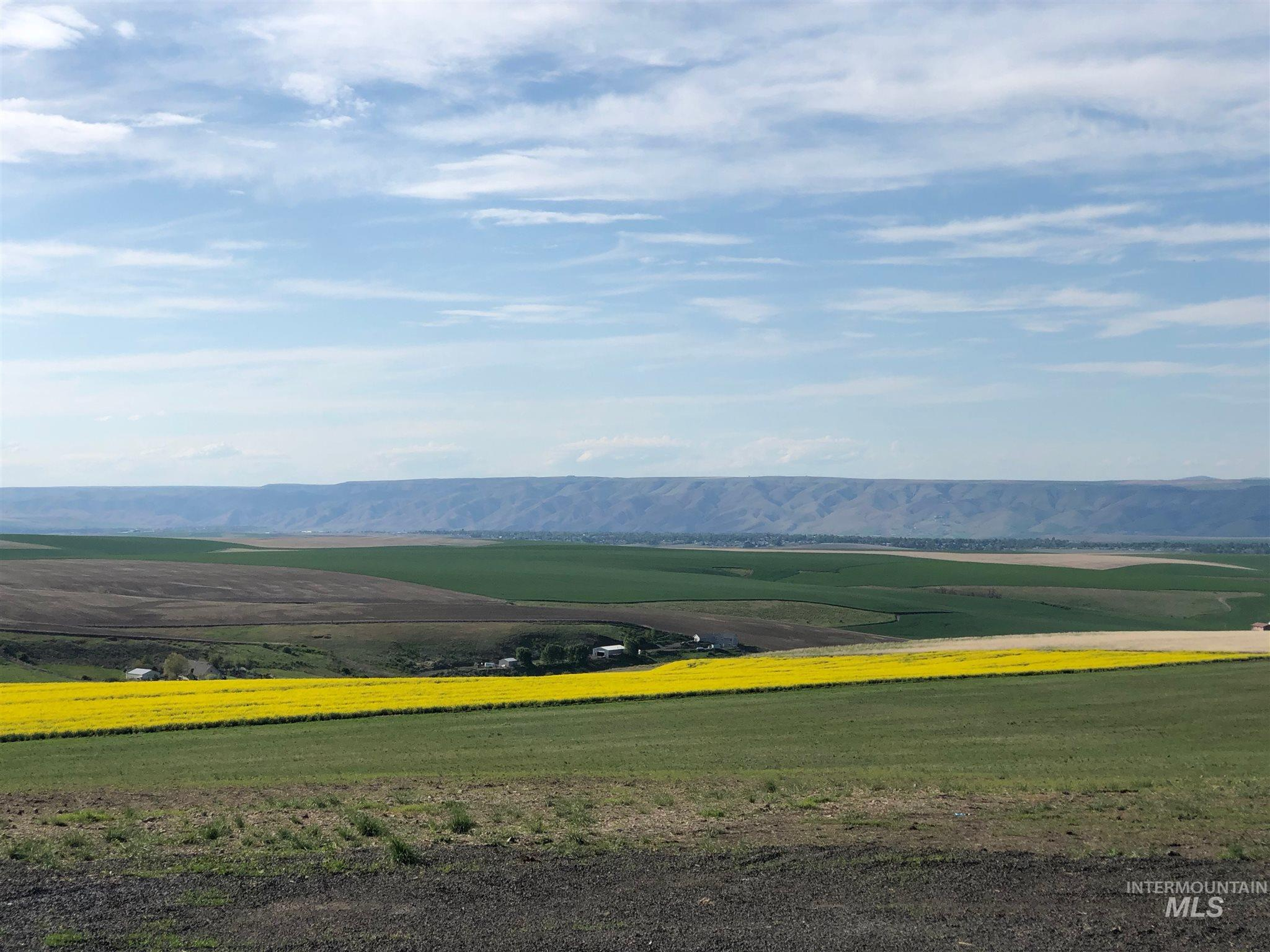 LOT 17A Pheasant Loop Rd Property Photo - Lewiston, ID real estate listing