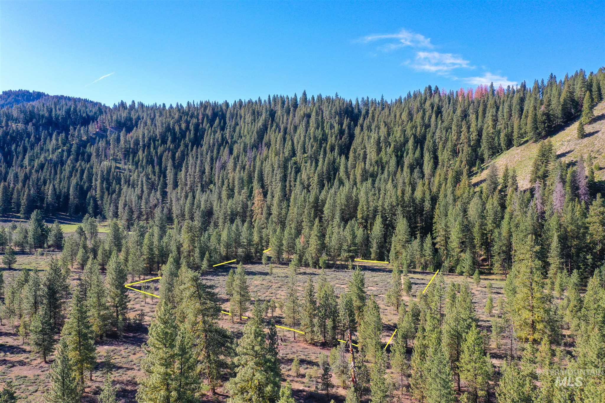TBD Abbots Gulch Rd Property Photo - Featherville, ID real estate listing