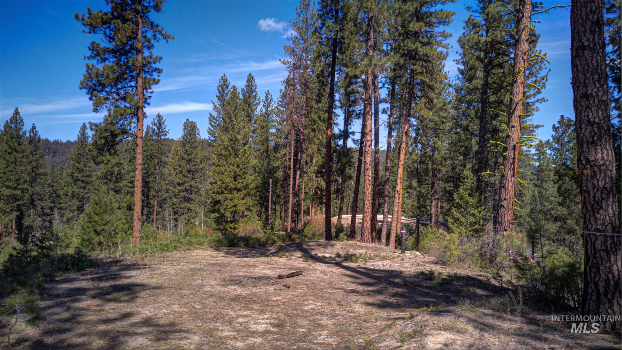 Lot 2 BLK 1 Crescent Circle Property Photo - Idaho City, ID real estate listing