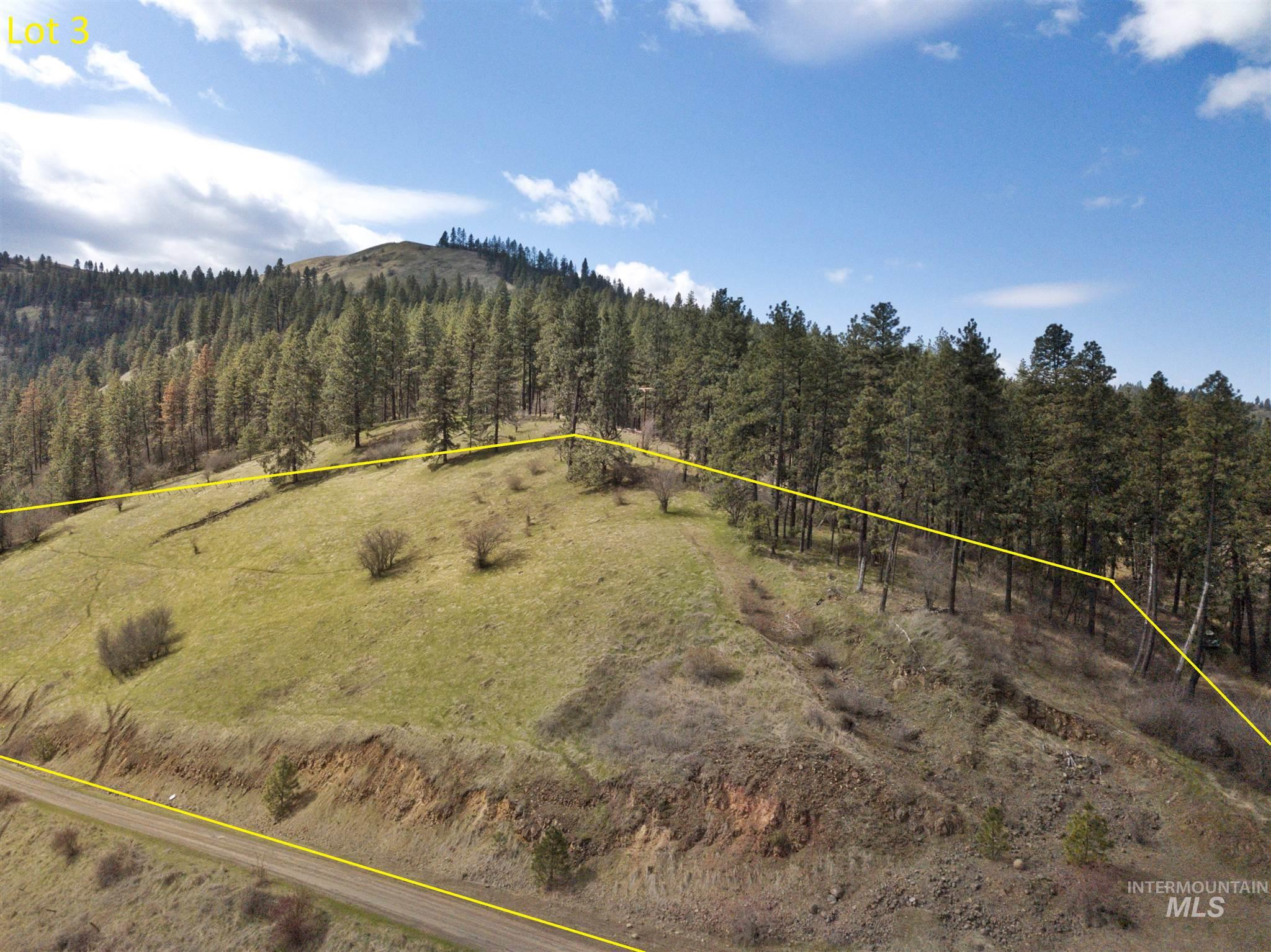 TBD Amos Bench Road Lot 3 Property Photo - Lenore, ID real estate listing