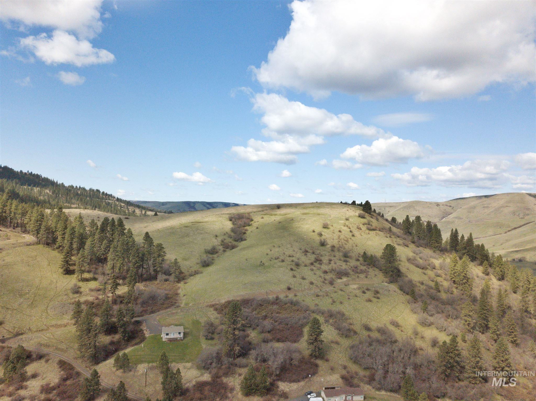 TBD Amos Bench Rd Lots 2 Property Photo - Lenore, ID real estate listing