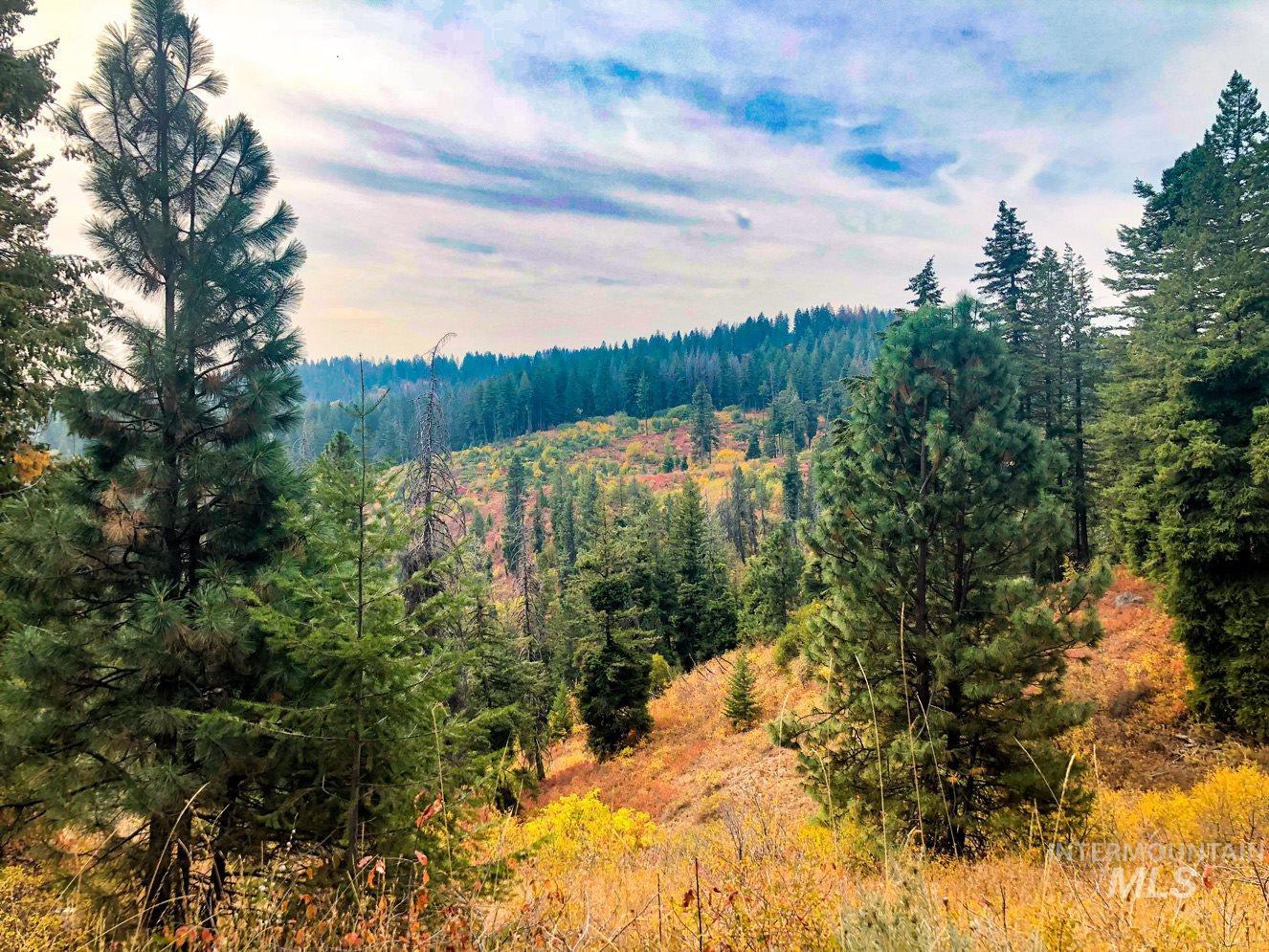 Tbd Boise Ridge Road Property Photo