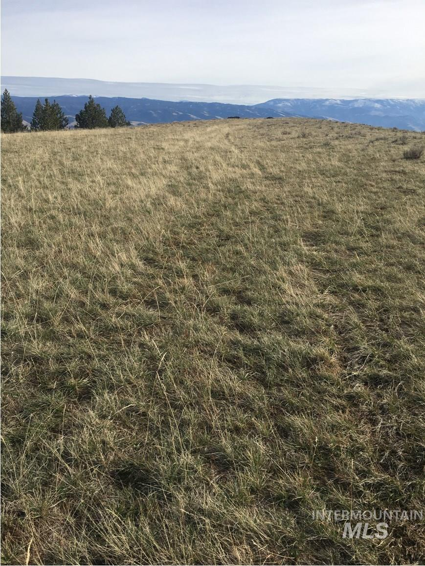 Lot 30 Elk Run Rd Property Photo - CottonWood, ID real estate listing