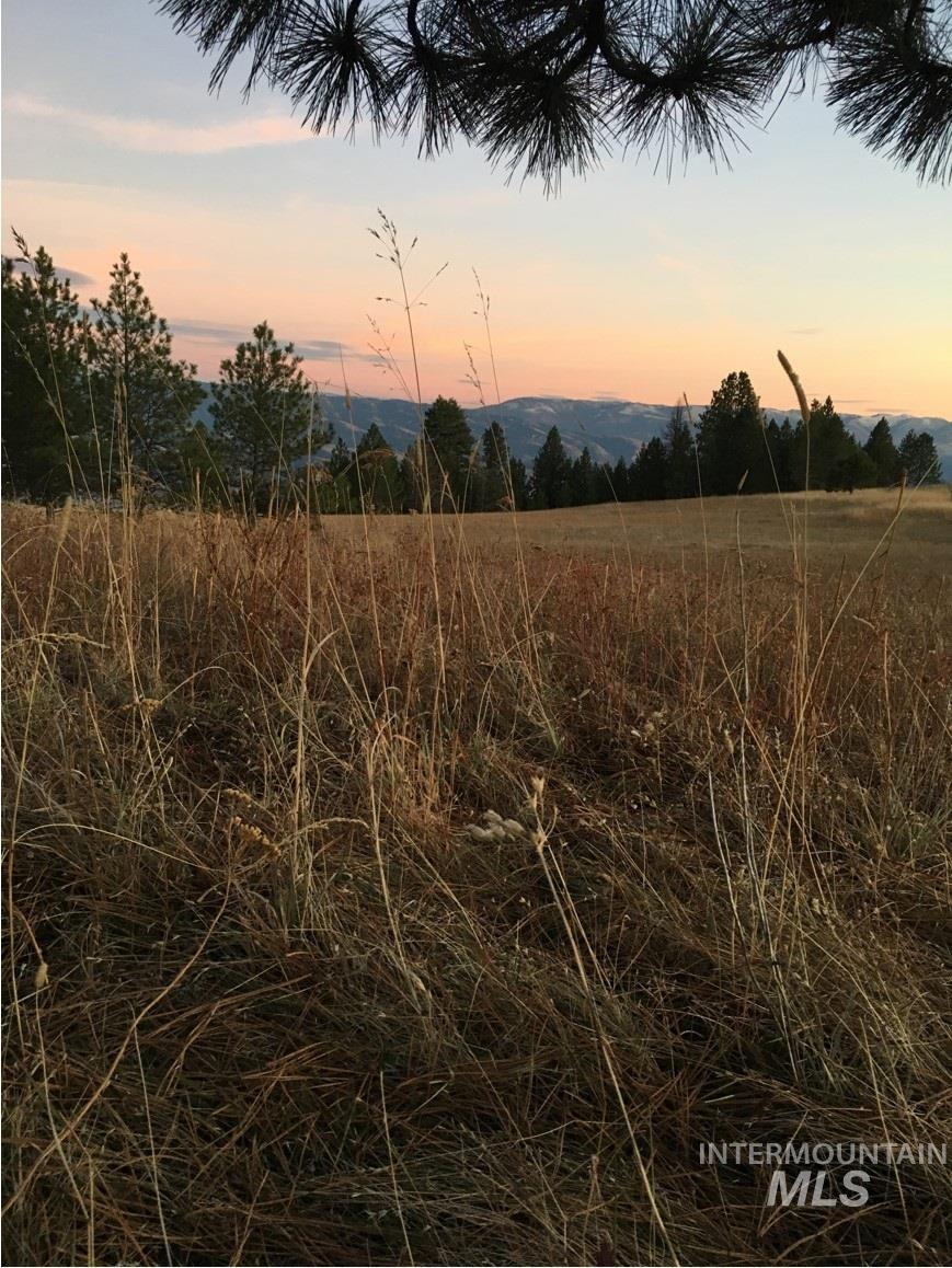 Lot 31 Elk Run Rd Property Photo - CottonWood, ID real estate listing