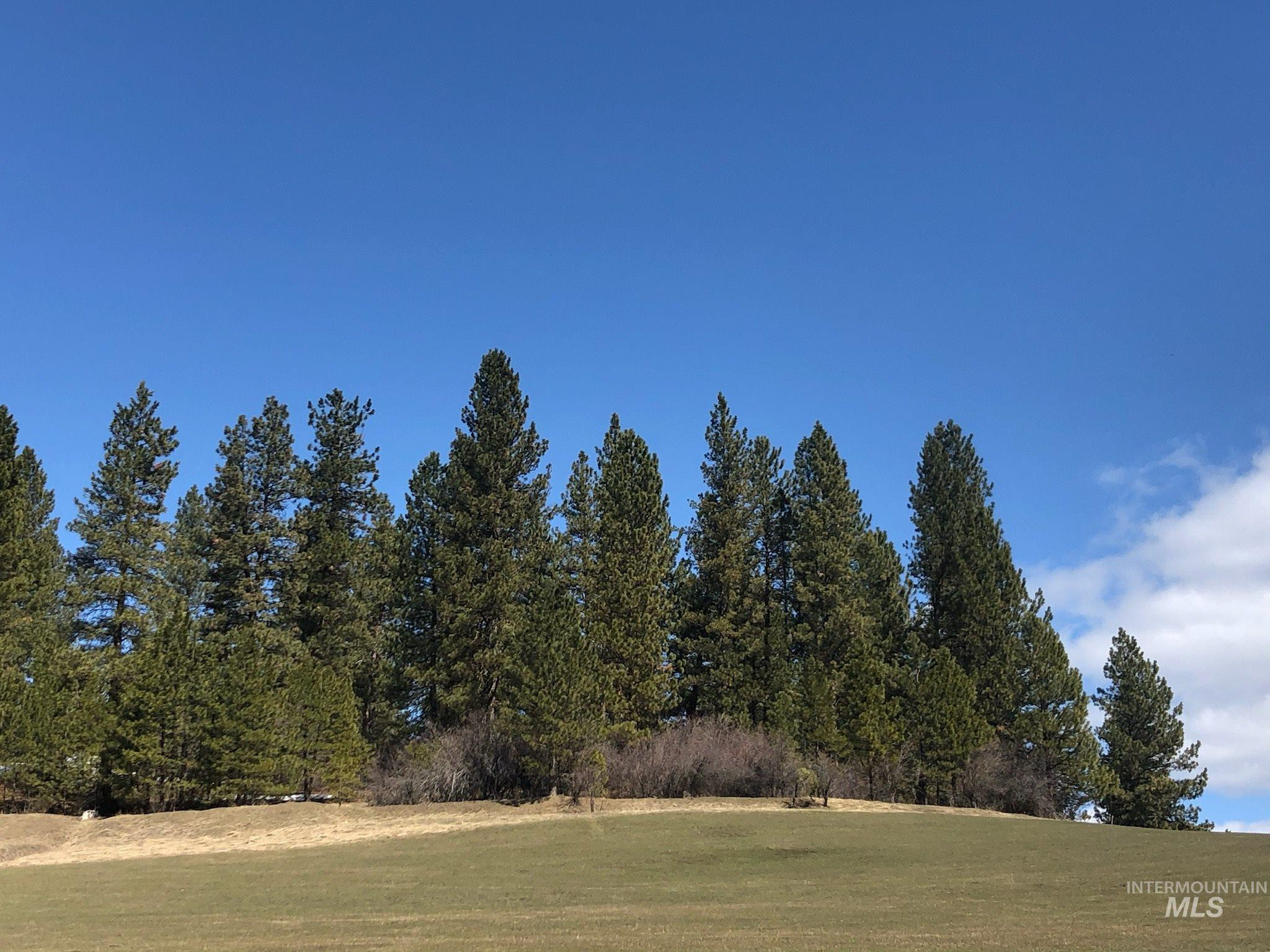 Lot 49 North Ridge at Terrace Lakes Property Photo - Garden Valley, ID real estate listing