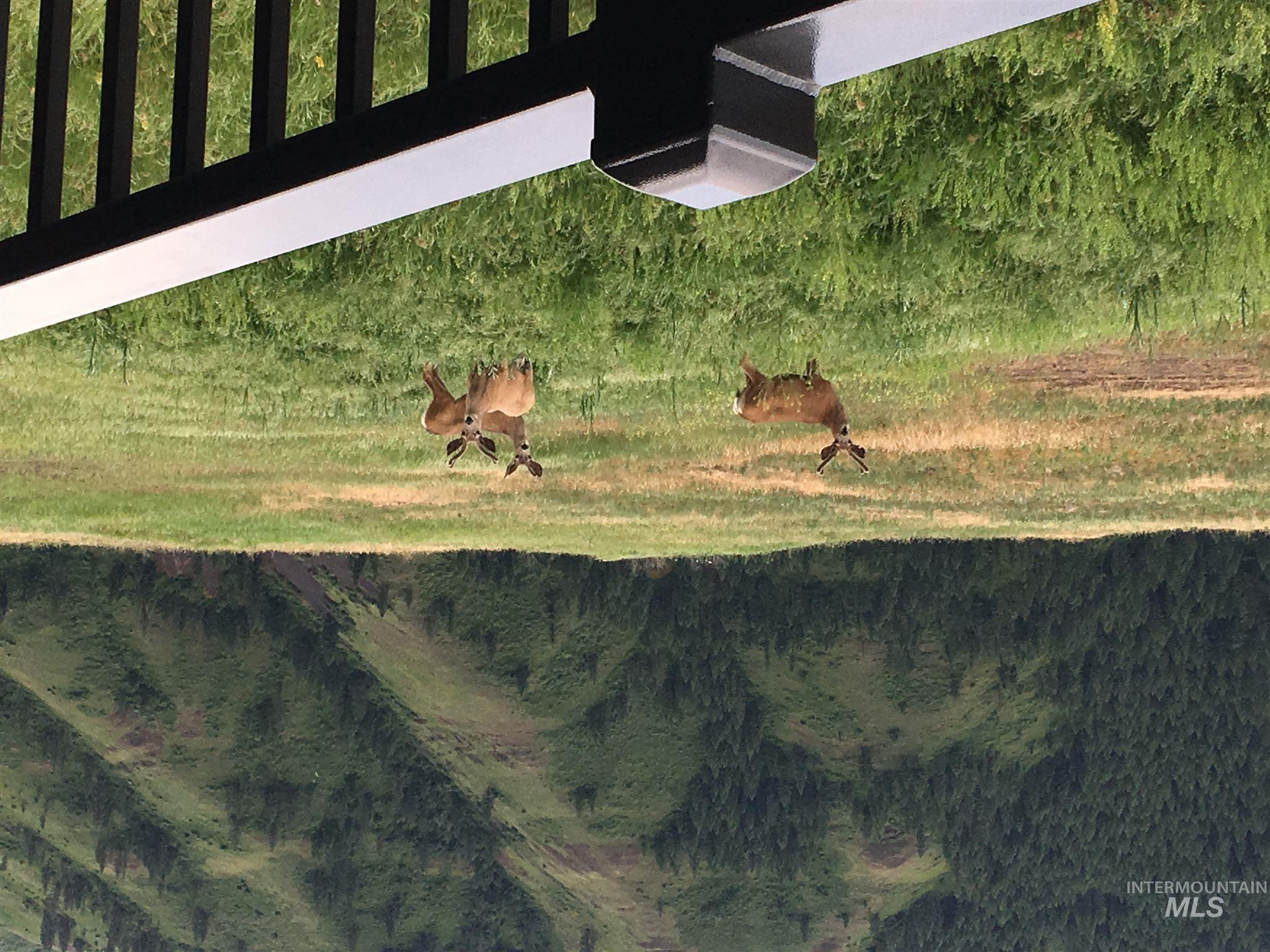 354 Lamb Rd Property Photo 15