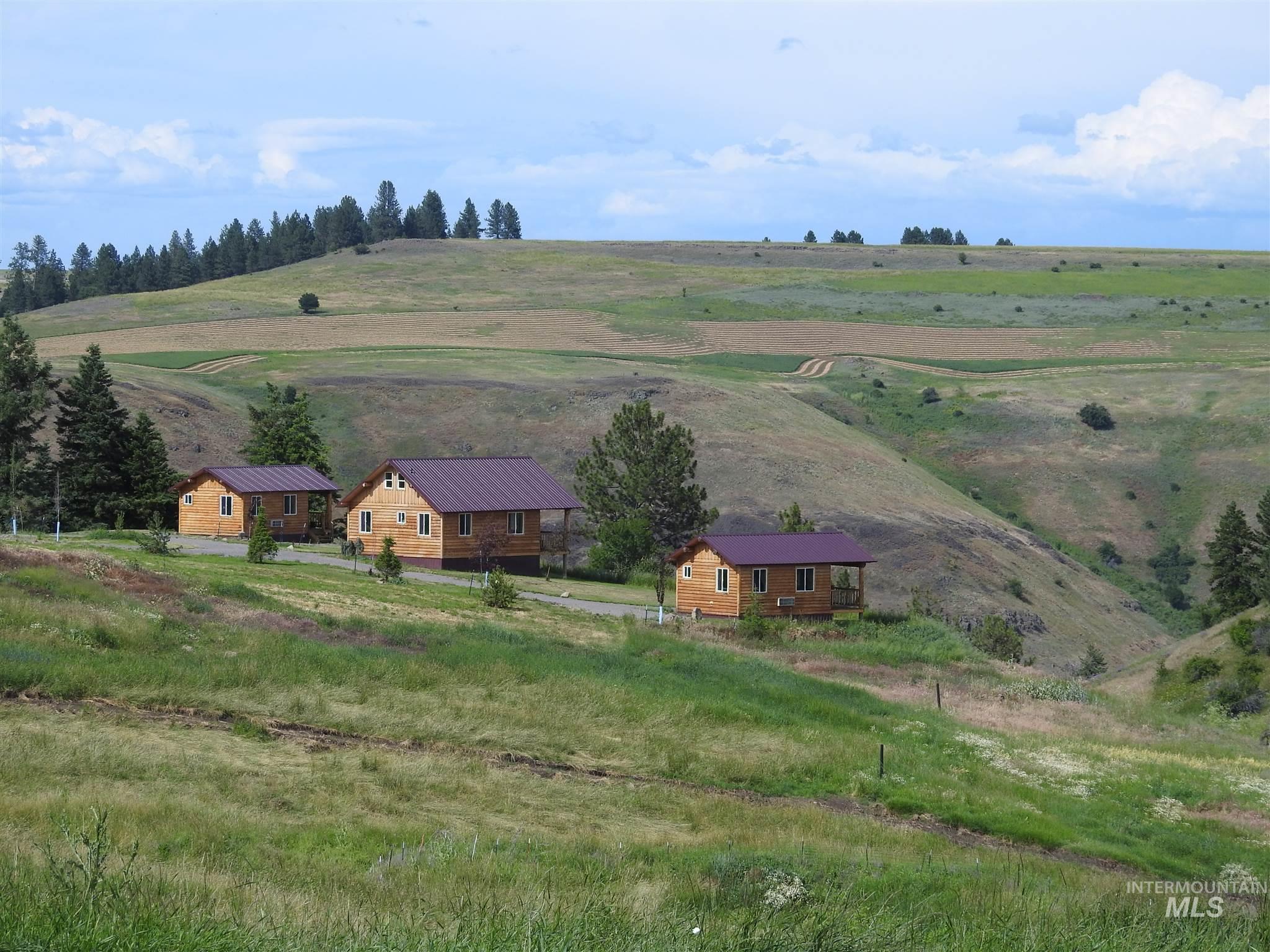 229 Scotlyn Ranch Road Property Photo 35