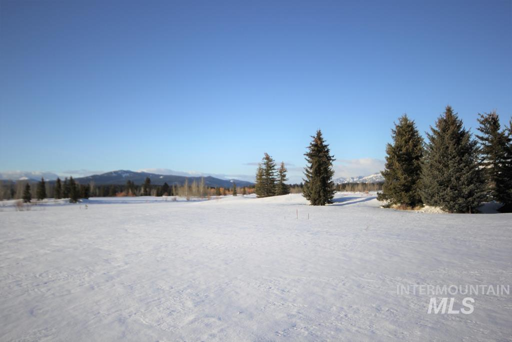 Lot 52 Rawhide Loop Property Photo - McCall, ID real estate listing
