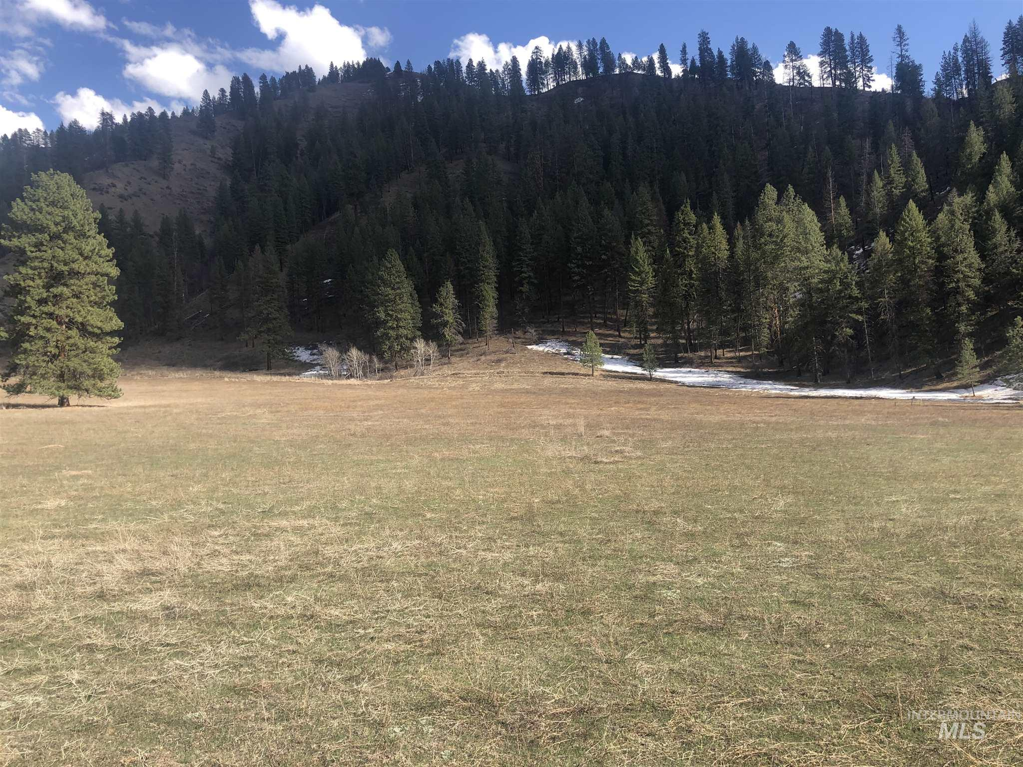 TBD Blk 1 Lot 2 Payette River Heights Property Photo - Garden Valley, ID real estate listing