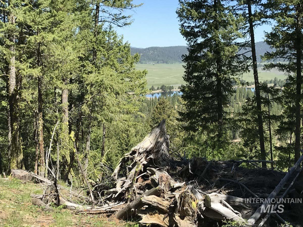 21 Sarah Way Property Photo - Cascade, ID real estate listing