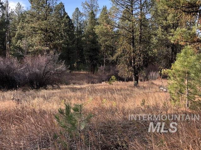 Lot 5 Timber Ridge Dr Property Photo - New Meadows, ID real estate listing