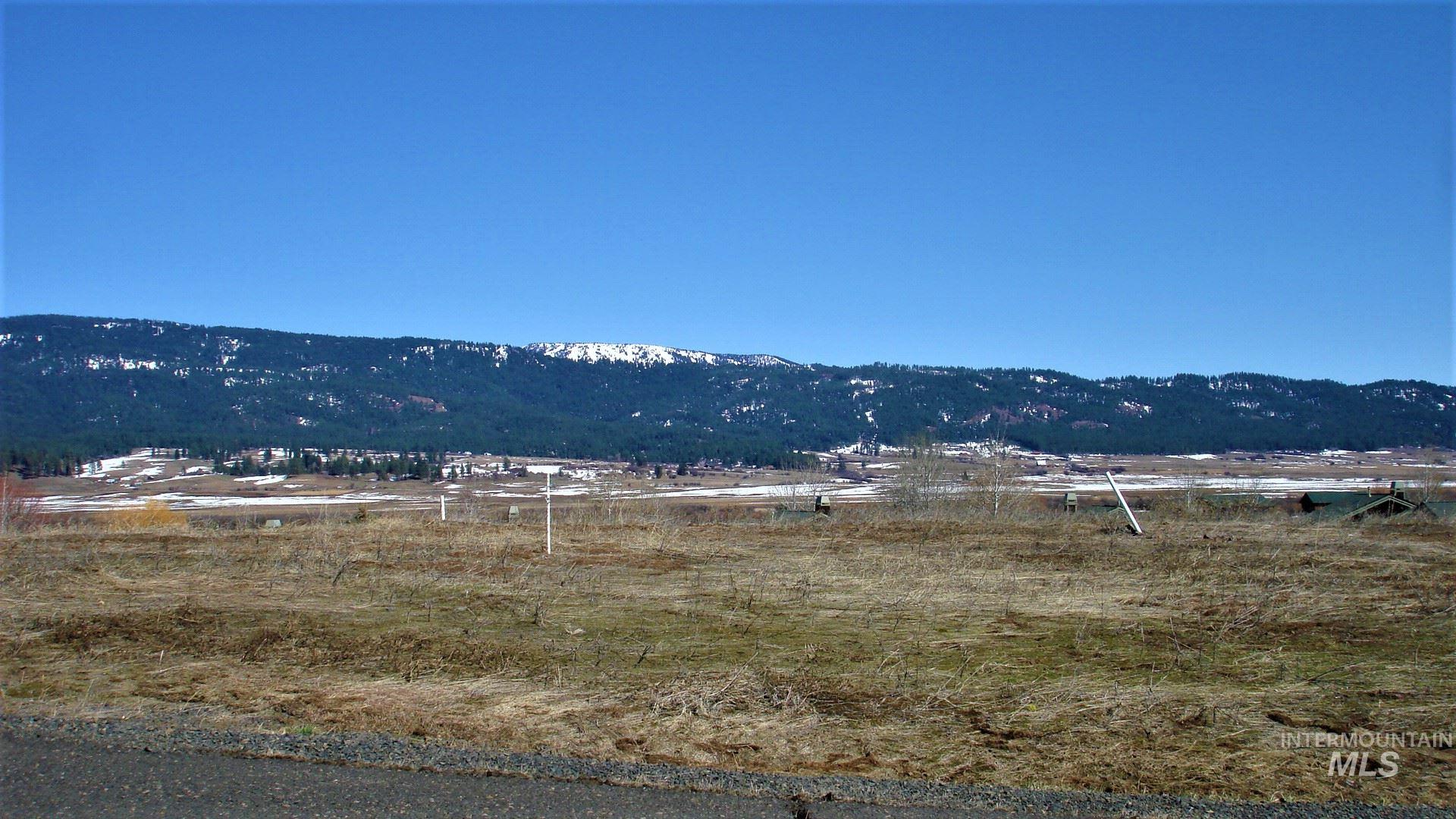 Lot 40 Village Loop Property Photo - New Meadows, ID real estate listing