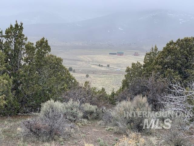 TBD S. Elba Almo Rd. Property Photo - Elba, ID real estate listing