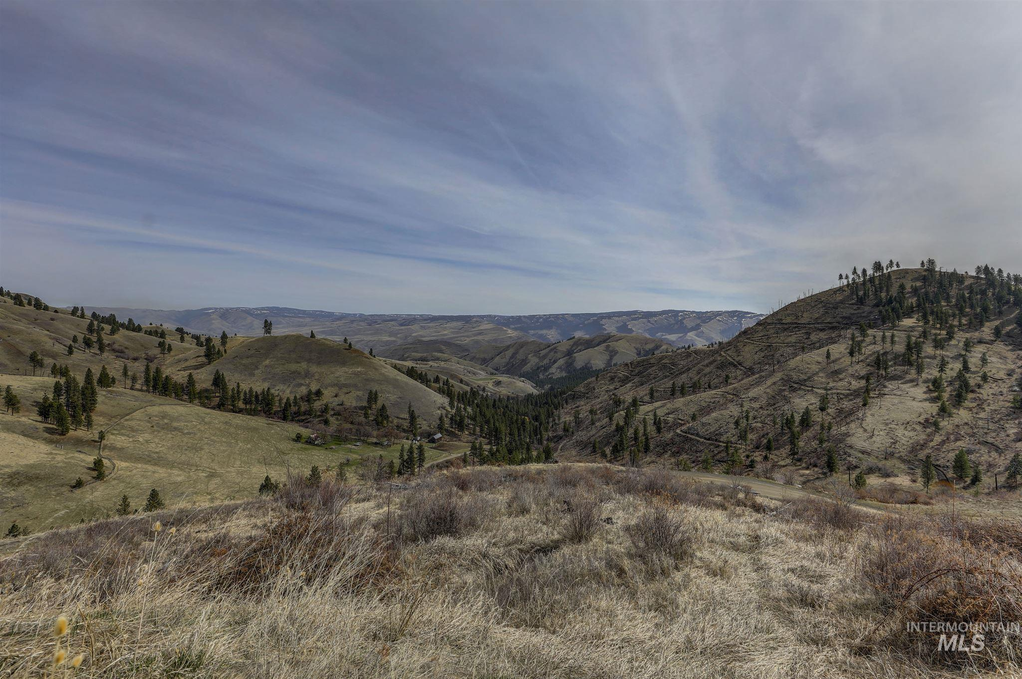 TBD Deer Creek Road Property Photo - White Bird, ID real estate listing