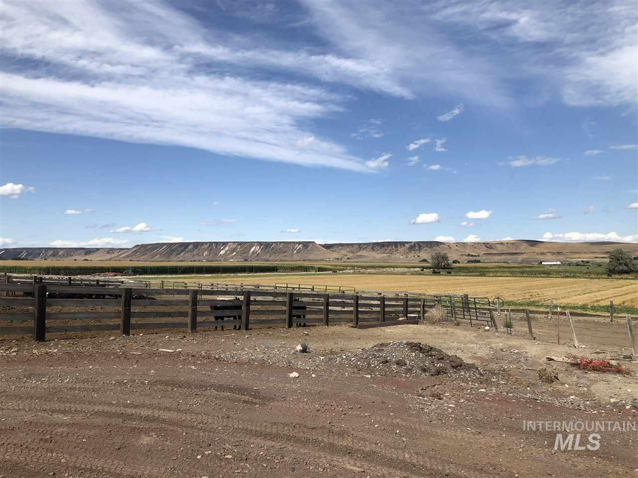 12562 Cattle Drive Property Photo 4