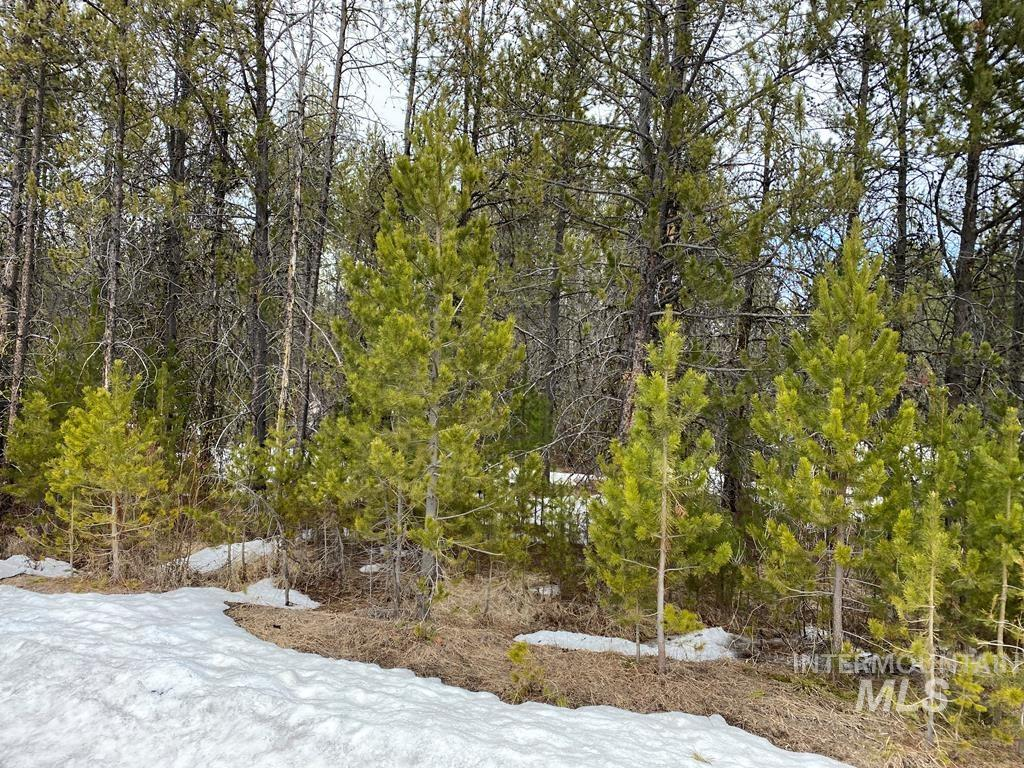 22 WHITE FIR LOOP Property Photo - Donnelly, ID real estate listing