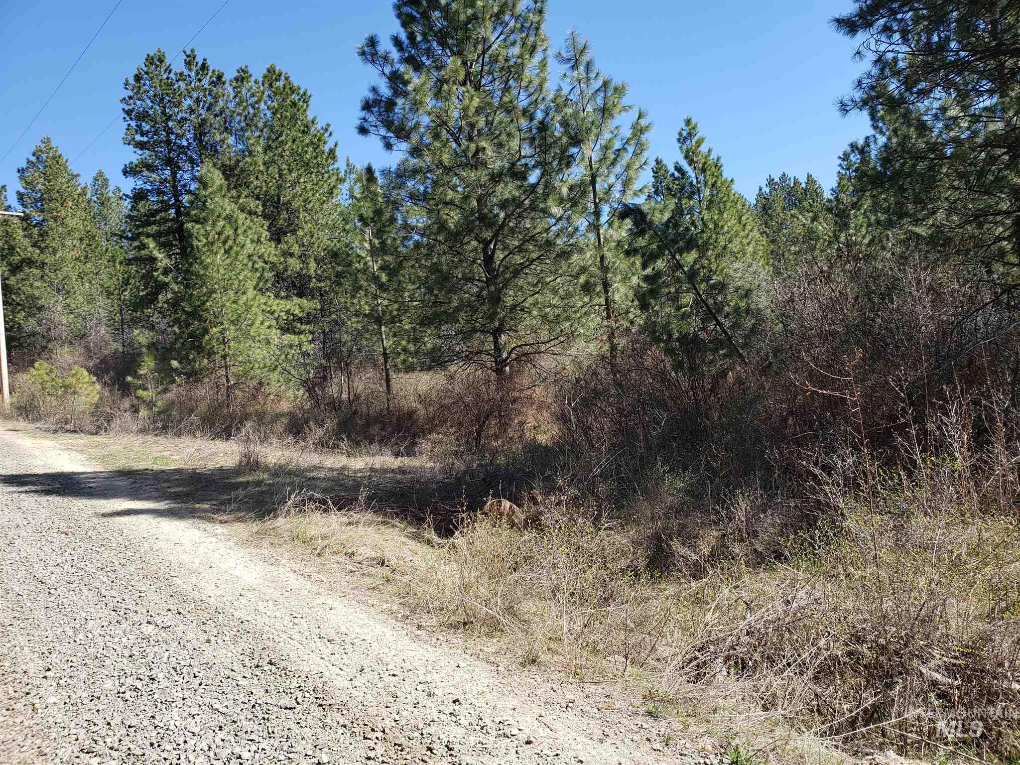 Property Photo - St. Maries, ID real estate listing