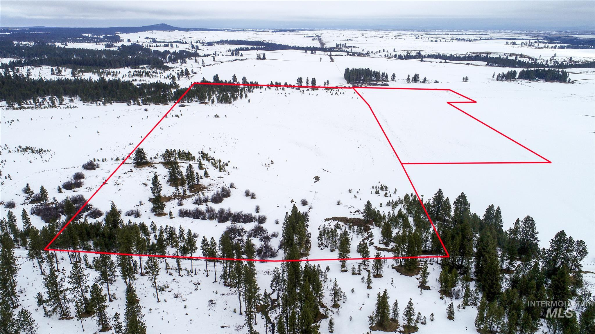 TBD Agnew Property Photo - CottonWood, ID real estate listing