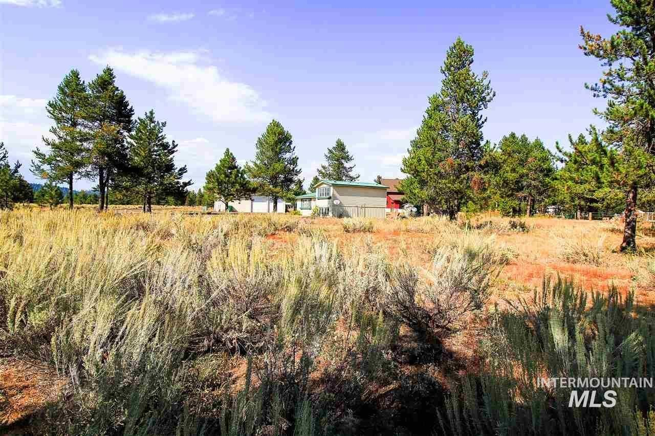 200 Wisdom Rd Property Photo - McCall, ID real estate listing