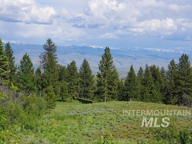 TBD Cow Creek Road Property Photo - Cambridge, ID real estate listing