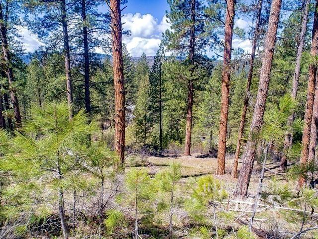 Lot 5 Meadow Lark Circle Property Photo - Idaho City, ID real estate listing