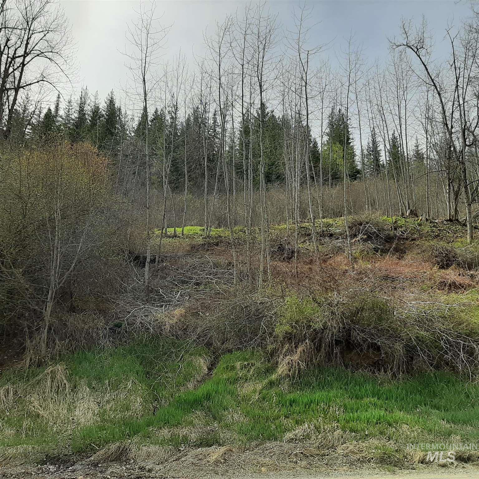Terror Gulch Road Property Photo 3