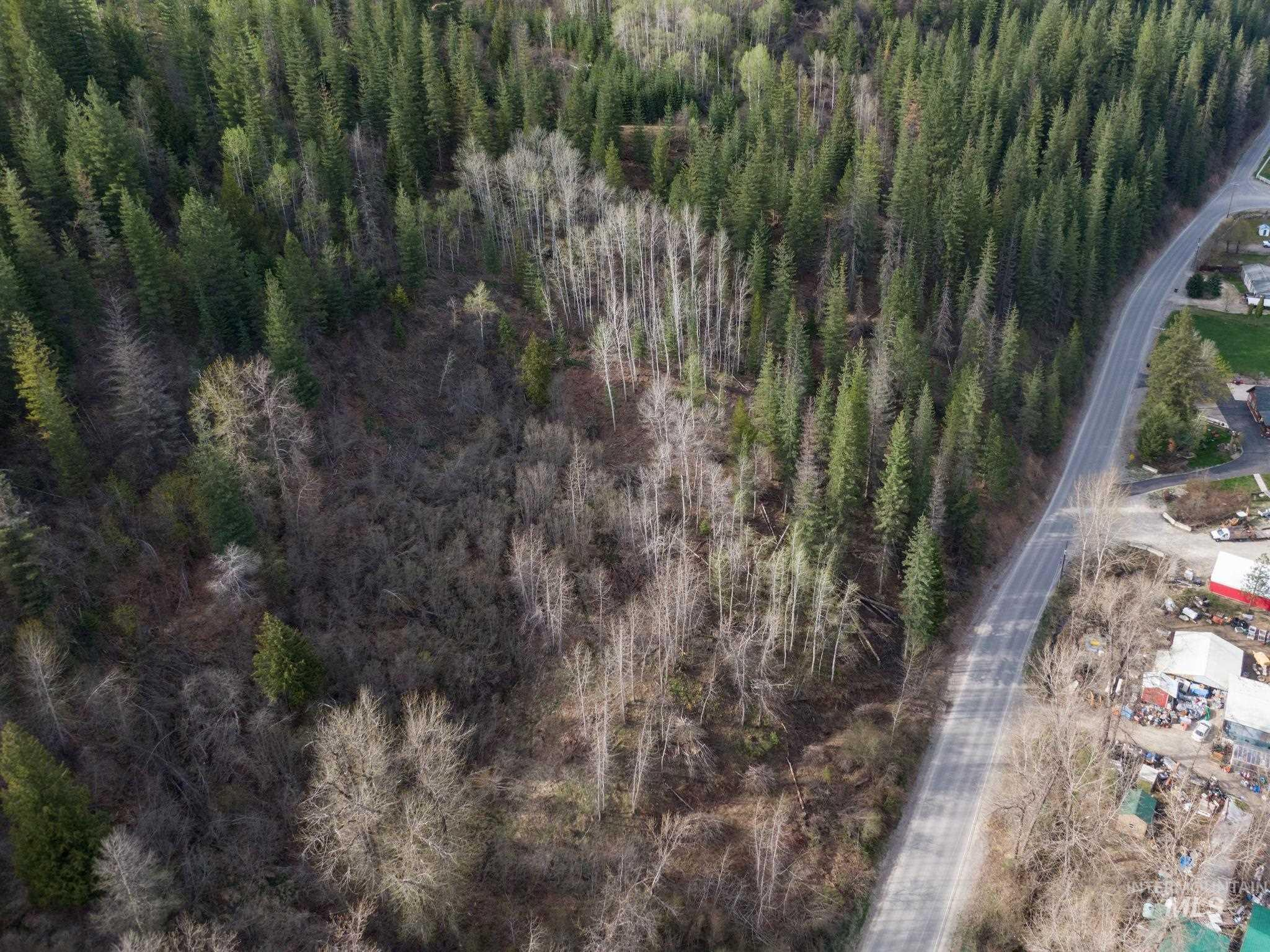 Terror Gulch Road Property Photo 7
