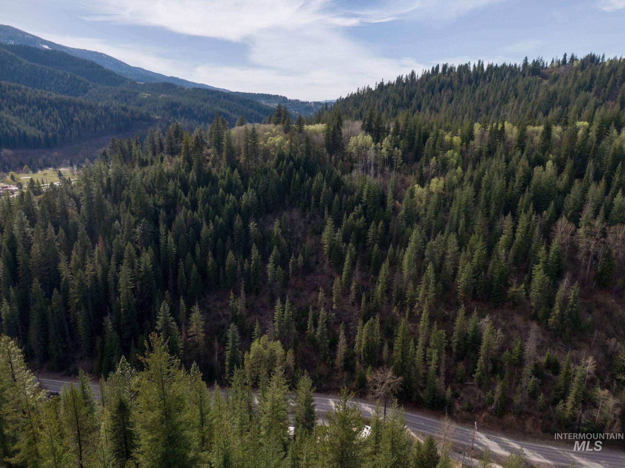 Terror Gulch Road Property Photo 9