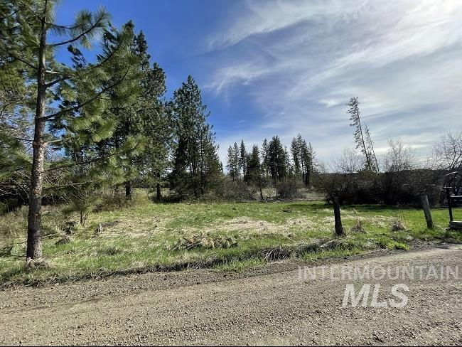 TBD Maple Creek Property Photo - Harvard, ID real estate listing