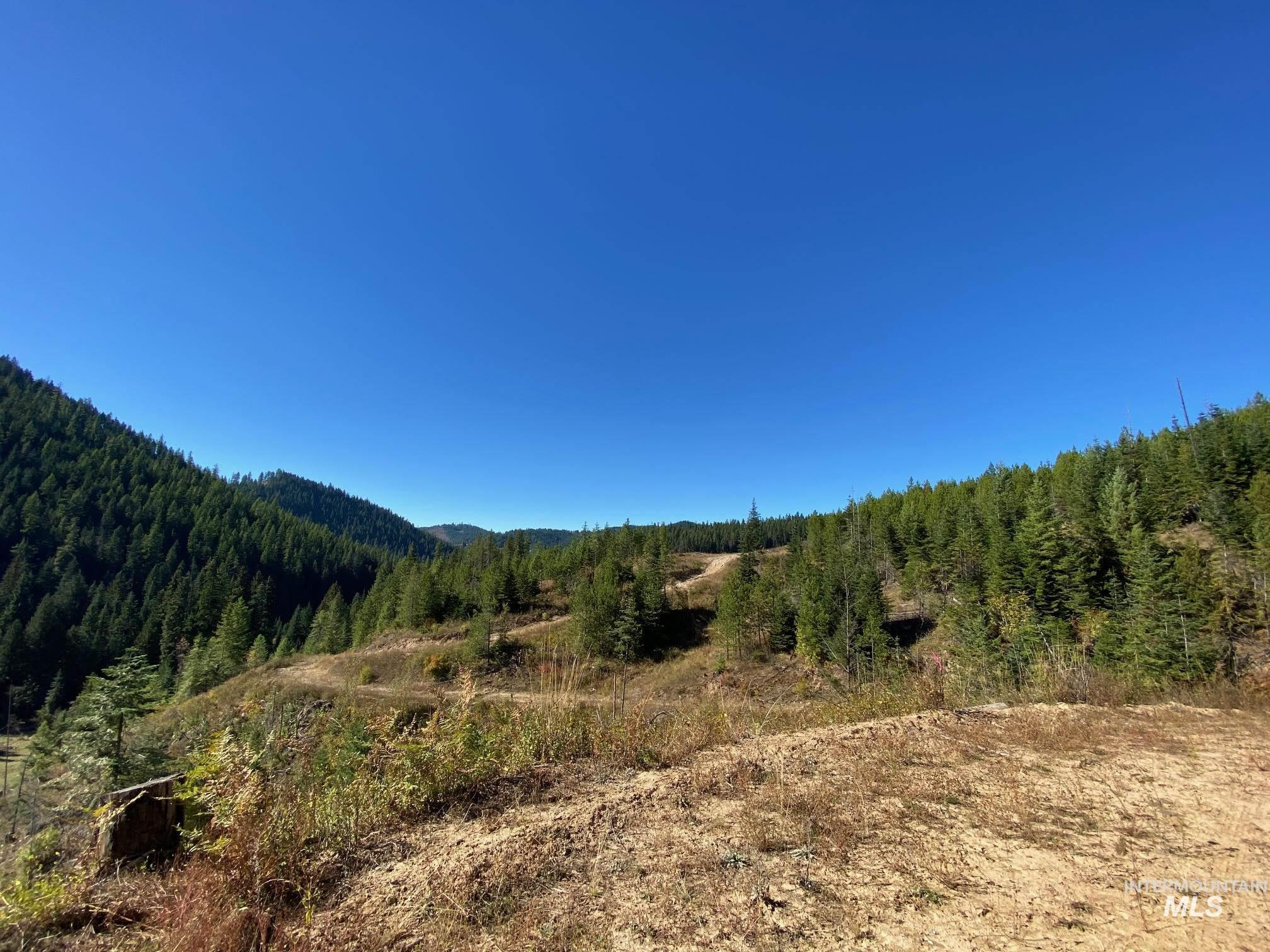 TBD Wagner Meadows-Parcel 1 Property Photo - Harvard, ID real estate listing