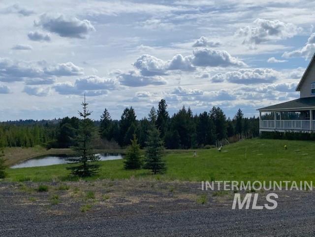 1015 White Pine Flats Property Photo 33