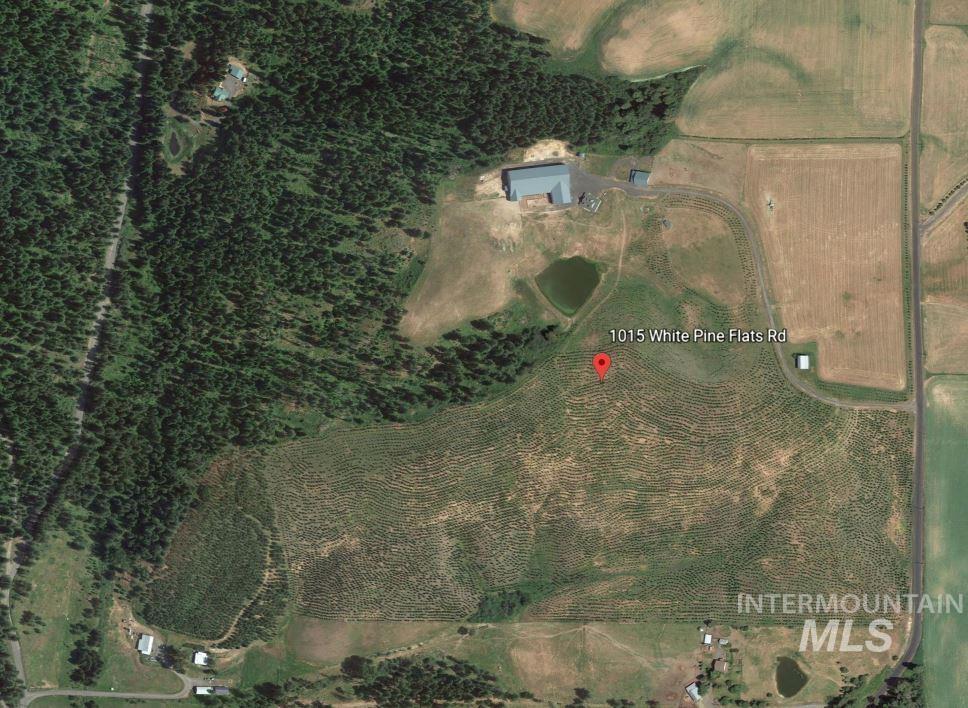 1015 White Pine Flats Property Photo 48