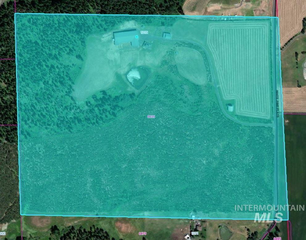 1015 White Pine Flats Property Photo 49