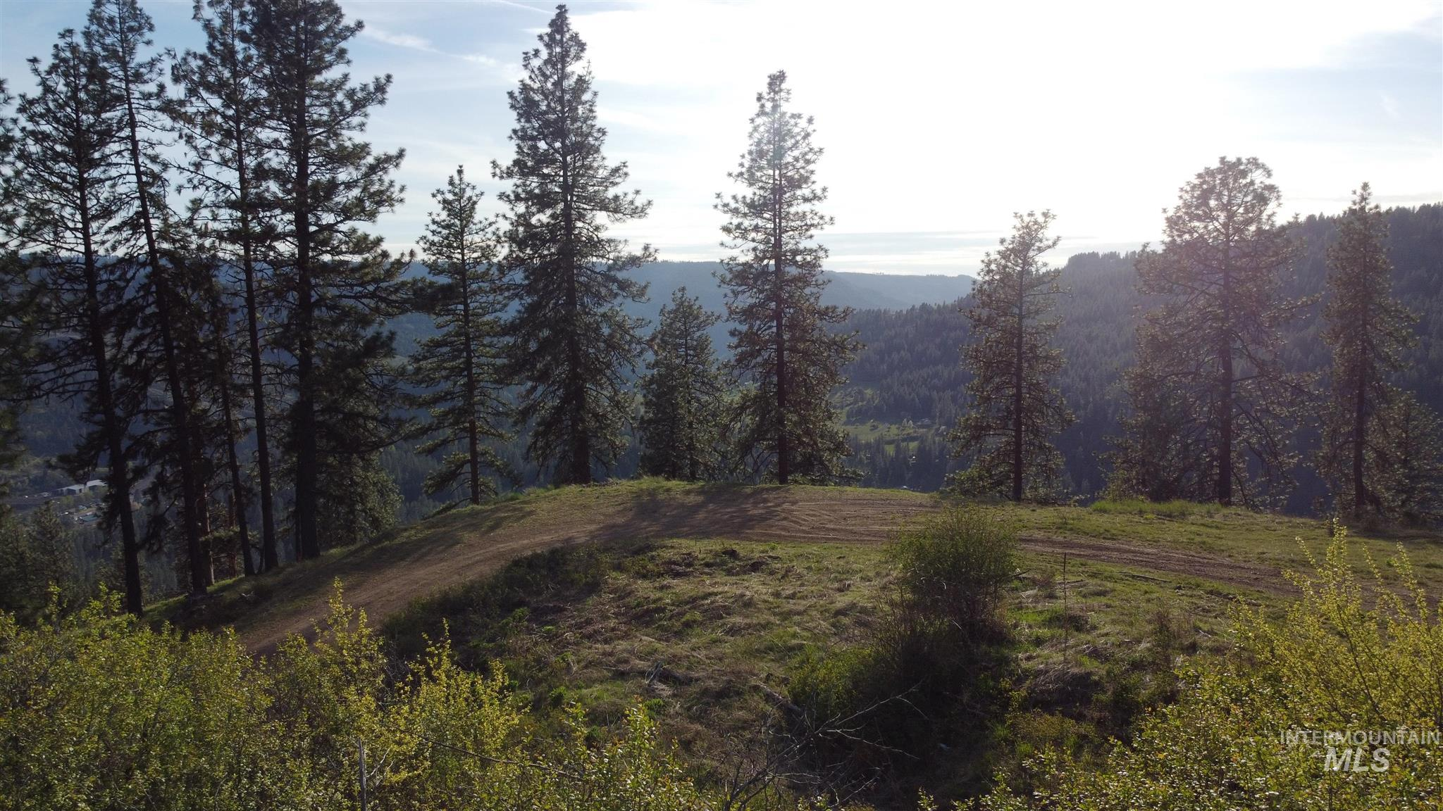 TBD Deer Creek Road Parcel 1 Property Photo - Orofino, ID real estate listing