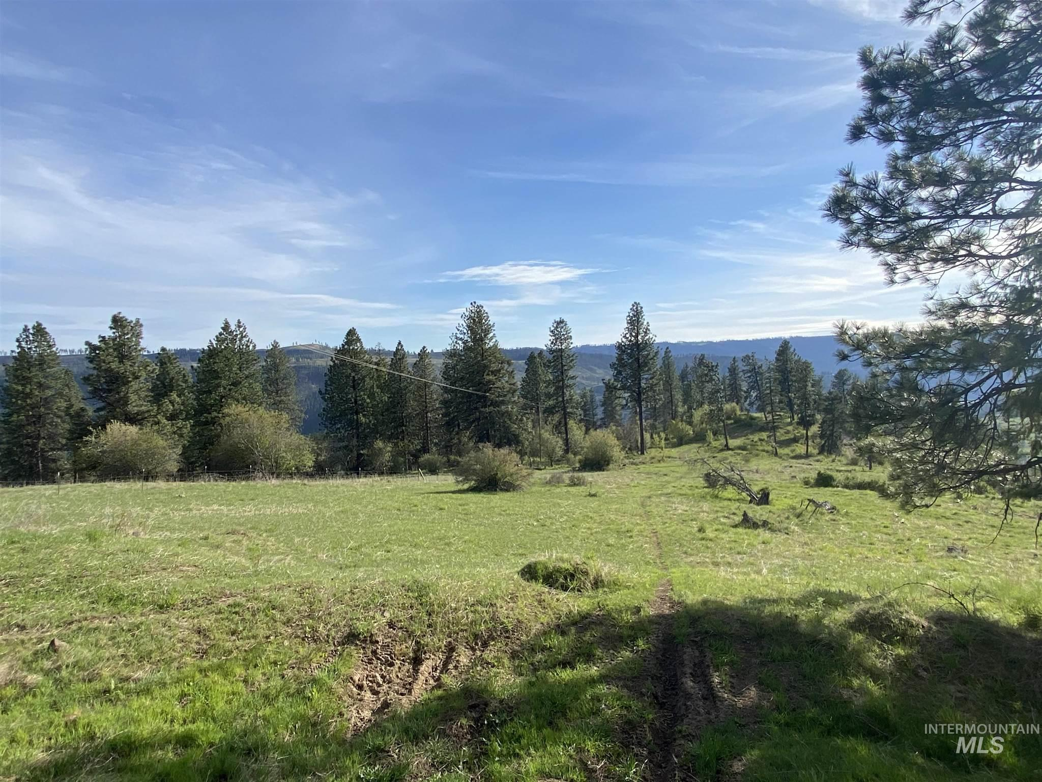 TBD Deer Creek Road Parcel 2 Property Photo - Orofino, ID real estate listing