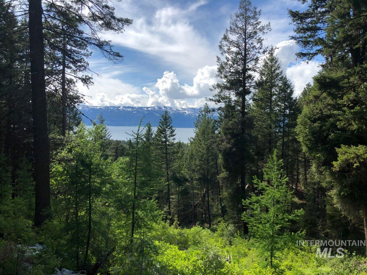1600 Crown Point Parkway Property Photo - Cascade, ID real estate listing