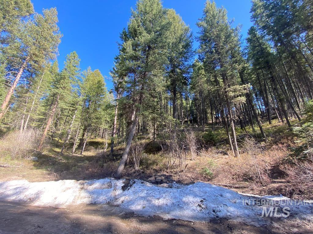 1321 Laurel Drive Property Photo - Cascade, ID real estate listing