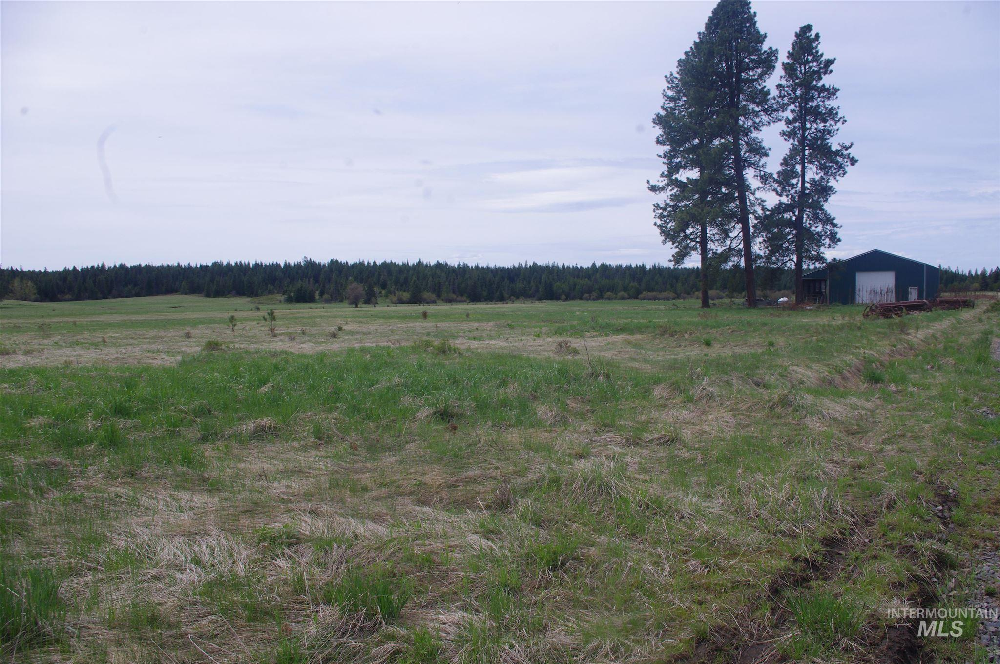 1914 Cemetery RD. Property Photo - Weippe, ID real estate listing