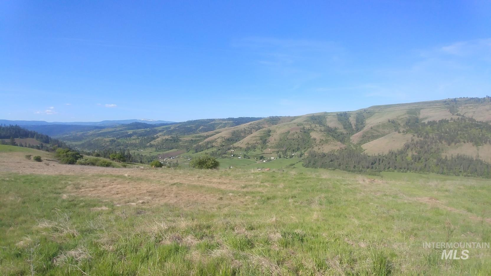TBD Battle Ridge Road Property Photo - Kooskia, ID real estate listing
