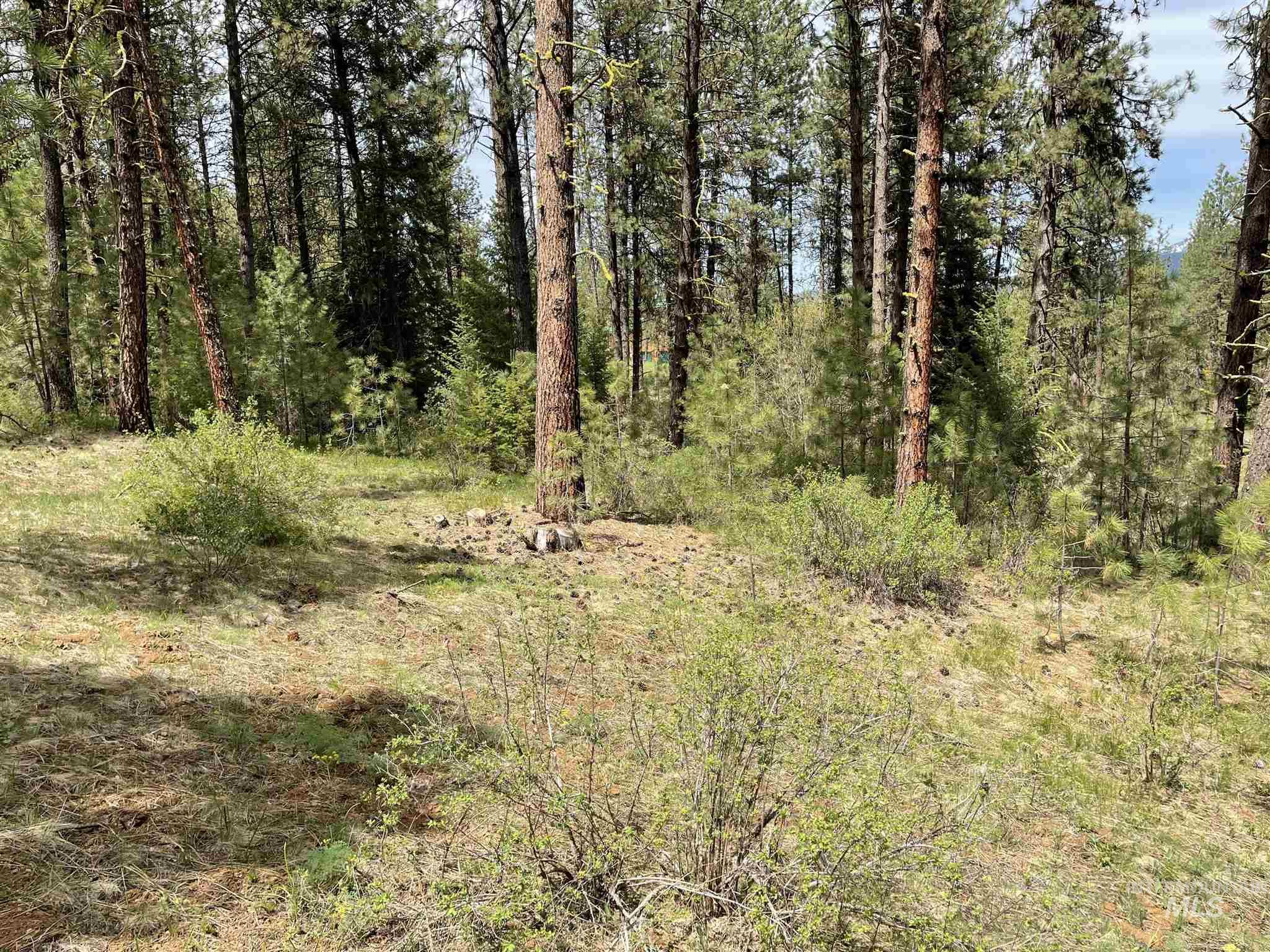 Lot 4 Blk 6 Meadowcreek Subdivision #1 Property Photo - New Meadows, ID real estate listing