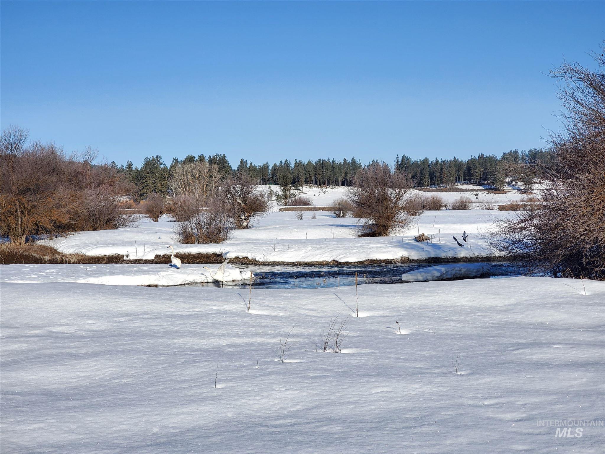 Tbd Salmon River Meadows Property Photo 10