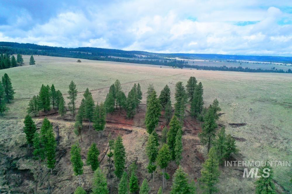 Tbd Fly Creek Rd Property Photo 29