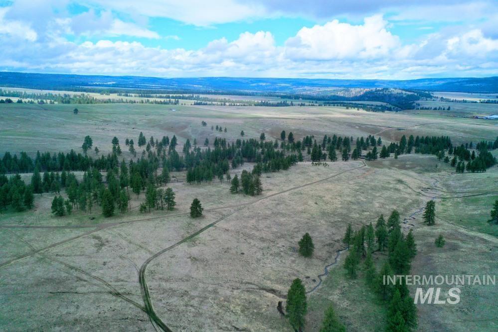 Tbd Fly Creek Rd Property Photo 30
