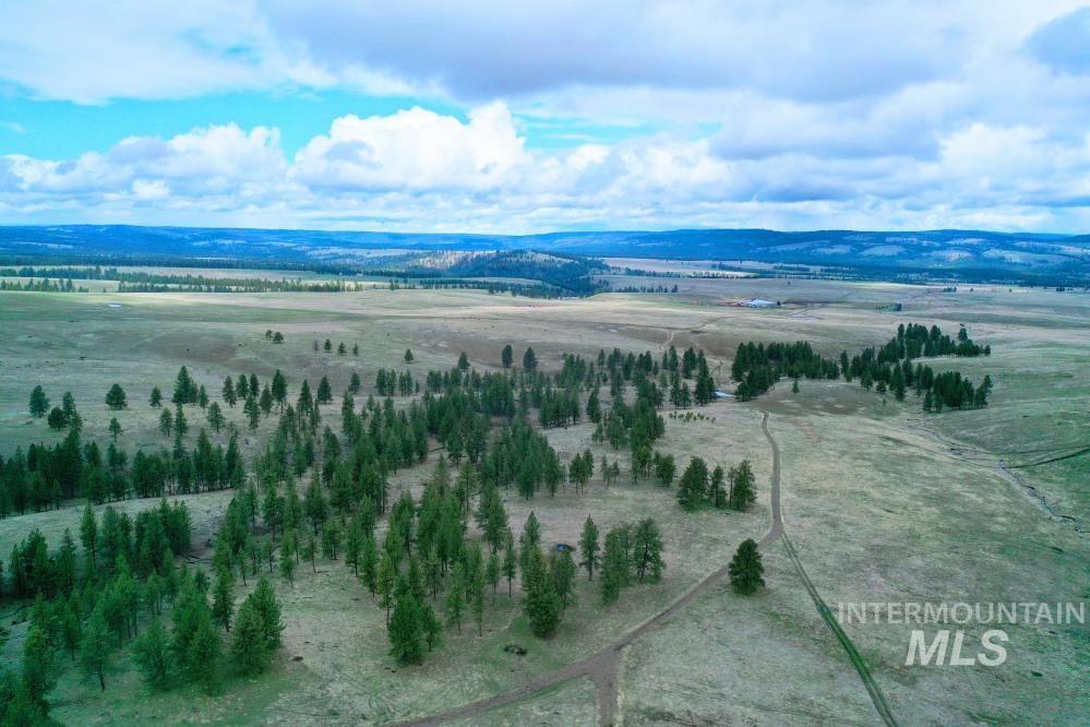 Tbd Fly Creek Rd Property Photo 31
