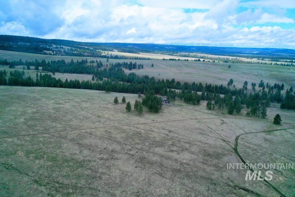 Tbd Fly Creek Rd Property Photo 33