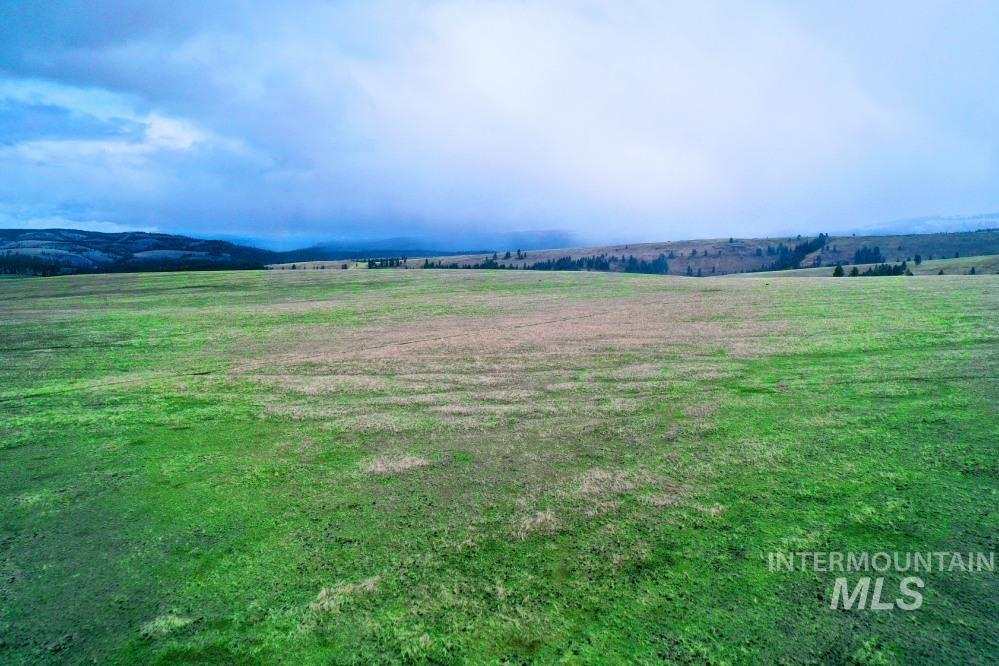 Tbd Fly Creek Rd Property Photo 39